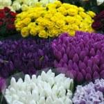 Flowers market — Stock Photo