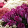 Flowers market — Stock Photo #9716144