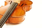 Close-up of the violin over white — Stock Photo