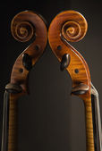 Violin and reflection — Stock Photo