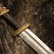 Royalty-Free Stock Photo: Still life with scandinavian sword on a fur