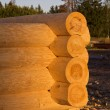Corner of blockhouse from logs — Stock Photo #10496769