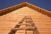 Building a new log cabins — Stock Photo