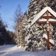 Winter landscape in the Karelia — Foto Stock