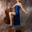 Stock Photo: Womin evening dress posing with cello