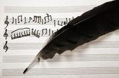 音乐笔记和羽毛 — 图库照片