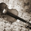 Old italian violin - Stock Photo