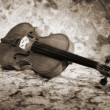 Stock Photo: Old italiviolin