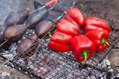 Red grilled pepper and eggplants on bbq — Stock Photo