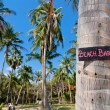 Beach bar sign on palm tree trunk - Stock Photo
