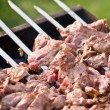 shashlik — Stock Photo #8107435