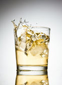 Soda splash — Stock Photo