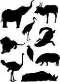 Animals silhouette set — Stock Vector
