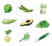 Set of green vegetables — Stock Vector