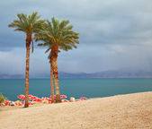 Winter on the Dead Sea — Stock Photo