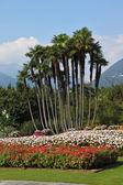 Park Villa Taranto — Stock fotografie