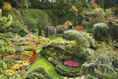 The Sunken-garden on island Vancouver — Stock Photo
