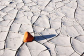 Small stone of sandstone in Death valley — Stock Photo