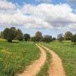 Stock Photo: Cloud in March at noon, rural dirt road