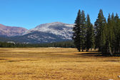 The picturesque part of Yosemite Park — Stock Photo