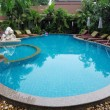 Whimsically curved pool with  clear water - Photo