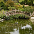 Stock Photo: Small pond and decorative wooden bridge