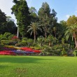 Stock Photo: Flowerbeds in park
