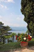 Lac de Côme — Photo