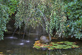 Pittoresca fontana-lumaca. — Foto Stock