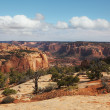 The red sandstone canyon - Stock Photo