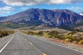 American road through the scenic desert — Stock Photo