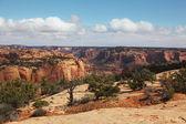 Kanion czerwonego piaskowca — Zdjęcie stockowe