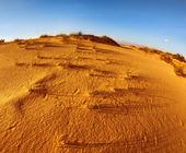 Sandy dunes at coast of Mediterranean sea — Stock Photo
