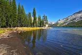 Jezioro górskie na przełęcz tioga — Zdjęcie stockowe