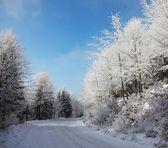 As trilhas largas recartilhadas. — Foto Stock