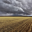 Thunder-storm. Fields after harvest — Stock Photo #9608640
