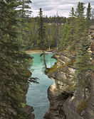 "Falls ""Athabasca"" — Stock Photo"