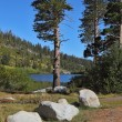 "Stock Photo: ""Mammoth Lake"" among forests"
