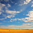 Steppe — Stock Photo #9703583