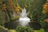 Wspaniały taniec fontanna na wyspie vancouver — Zdjęcie stockowe