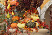 The harvest: baskets and vases with colorful gourds — Fotografia Stock