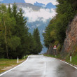 Wet shiny road in the Swiss Alps — Stock Photo #9926648