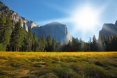 The glade in Yosemite park on a Sunrise — Stock Photo