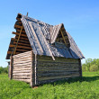 Wooden rural house on green field — Stock Photo