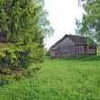 Old rural house on green field — Stock Photo