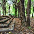Aging stairway in autumn park — Stock Photo