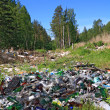 Garbage pit in pine wood — Stock Photo