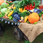 Set vegetables on rural market — Stock Photo