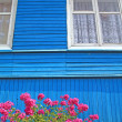 Flowerses near wall of the wooden building — Stock Photo #9583027