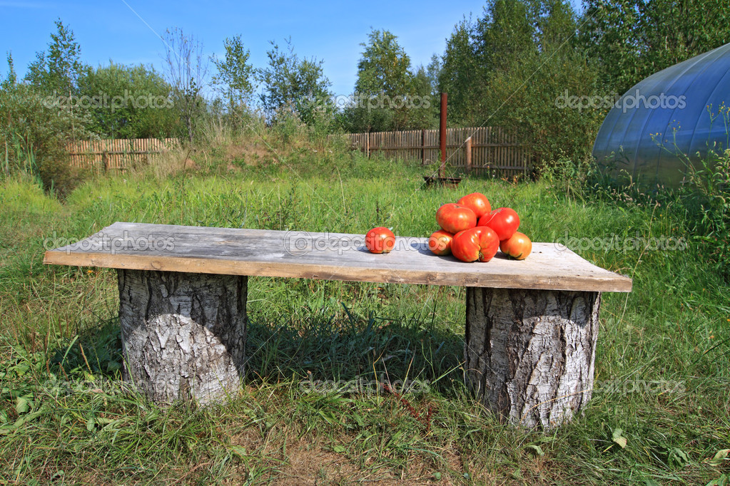 Ripe tomatoes on wooden bench — Stock Photo #9583714